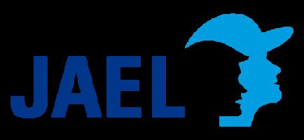 JAEL – Jugendhilfeverläufe Test